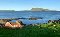 Tórshavn  fence