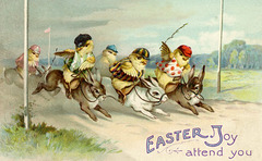 Jockey Chicks at the Easter Rabbit Race