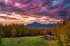 Palmer Sunrise