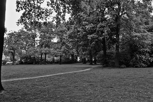 rathenaupark-1210094-co-25-05-15sw