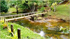 Ilhéus : el rio Tijupe