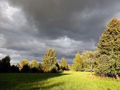 Autumn mood....