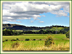 Green Fields.
