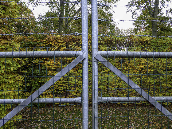 Gates and Beech hedges for HFF