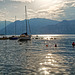 Am Gardasee