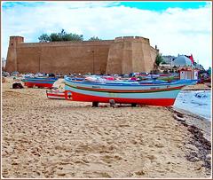 Hammamet : una bella foto ricordo di questa splendida  giornata !