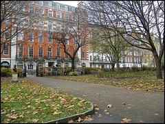 autumn at Queen Square