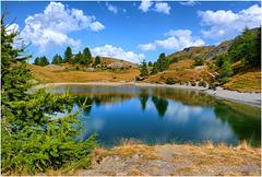 Il lago Nero a Sportinia - (449)
