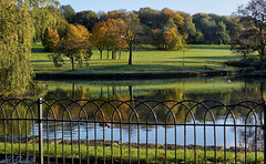 HFF -  Park Lake fence