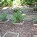 Jardin botanique de La Charme -63 (20)