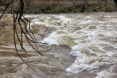 The river Argen (PIP)