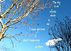 - the sky