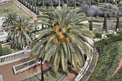Giant Steps – Baha'i Gardens, Haifa, Israel