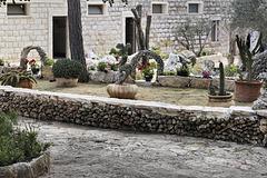 Cactus Garden, Take #5 – El-Muraqa Monastery, Daliyat al-Karmel, Israel