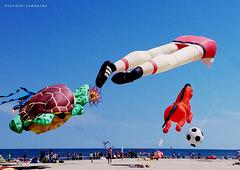 Flying Dreams on the beach in CERVIA (Romagna - Italia)