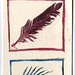 Feathers and Fish 2 xth proof
