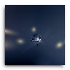 bulle nuit