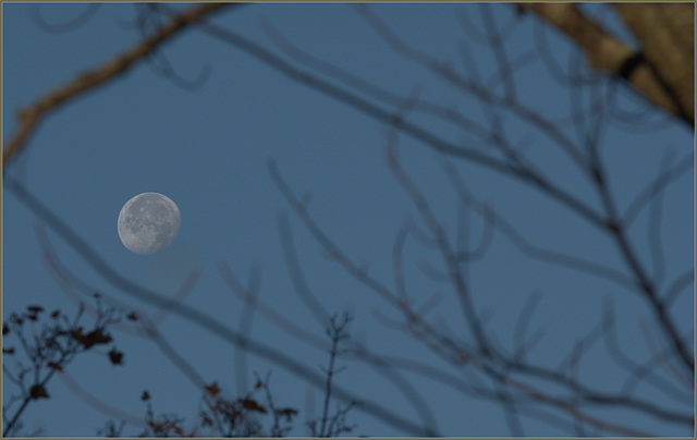 Ipernity The Waning Gibbous Moon This Morning As It Set In The West