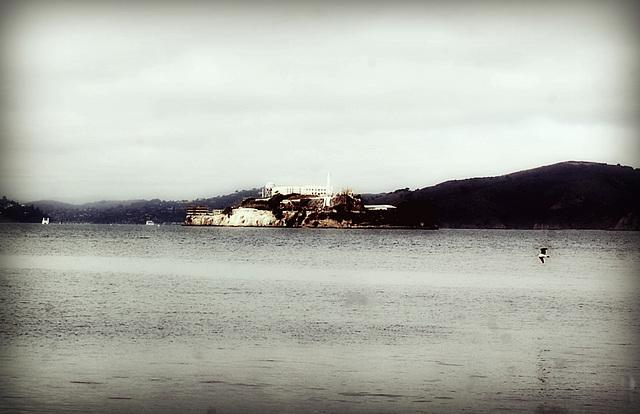 Alcatraz *