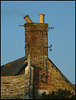 Audrey's crooked chimney pot
