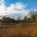 Fall on the Prairie