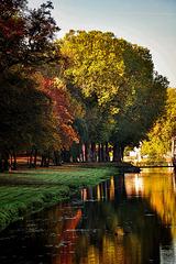 automne bis....