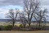 Cemetery, Highland Farms