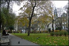 Queen Square autumn