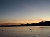 Salton Sea (2706)