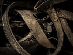 Les ronds de cuir