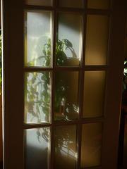 Through a Door Darkly