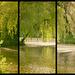Lake Triptych
