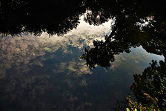 Dive Into The Clouds And Reflect