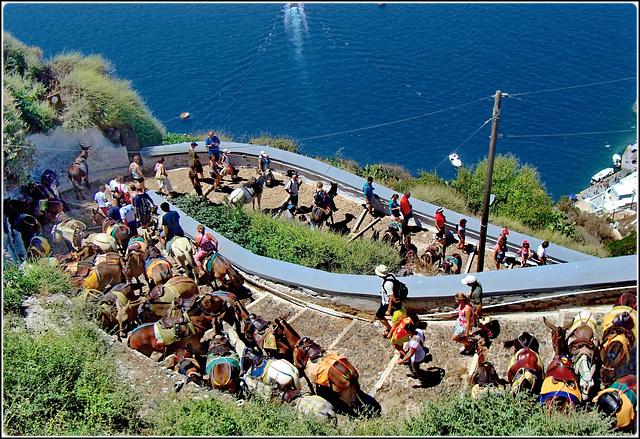 Santorini : La mulattiera che porta  da Ormos di  Θήρα a Thira e viceversa - in alternativa è disponibile una moderna cabinovia senza 'il profumo' dei muli