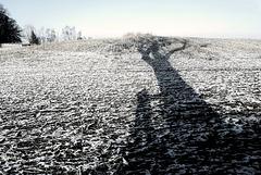 Winterliche Schatten (PiP)