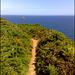 Newdowns Head  and coast path, for Pam.