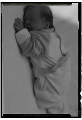 « Lorsque le premier bébé rit pour la première fois, son rire se brisa en un million de morceaux, et ils sautèrent un peu partout. Ce fut l'originedes fées.  »