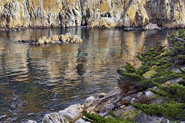 Rocky Reflection – Point Lobos State Natural Reserve, California