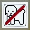 Weißenfels 2017 – No dogs