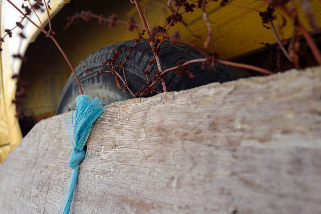 Penedos, Blue rope L1000081