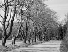 Charles E. Jordan Road