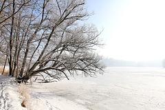Spaziergang rund um den Rößlerweiher