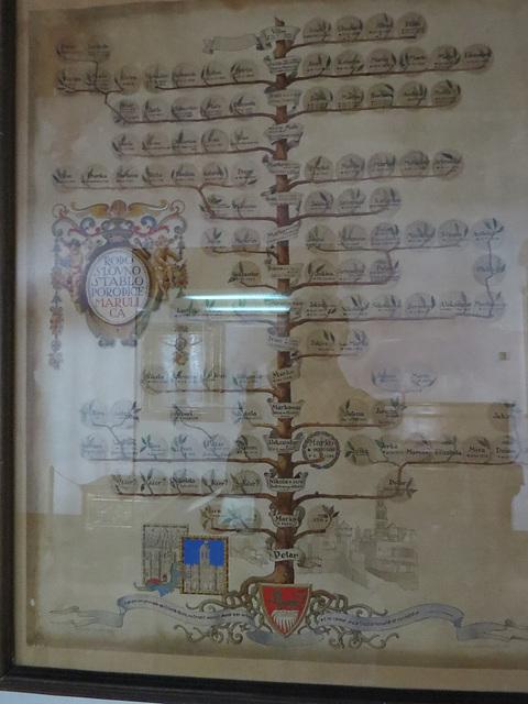 Musée de la ville de Split : arbre généalogique de la famille Marulic.