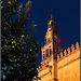Blaue Stunde an der Mezquita