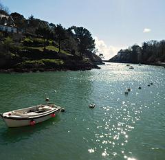le bonheur du printemps, Finistère