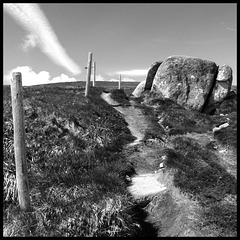 Un sentier vers le sommet du Hohneck