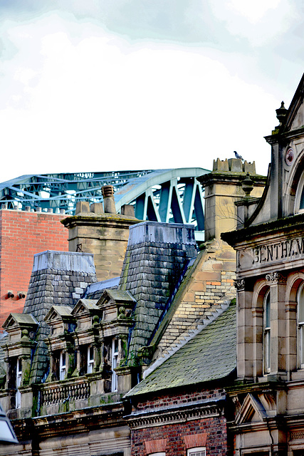 Roof tops and Tyne Bridge