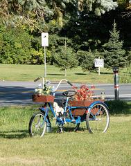 Vélo à fleurs