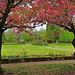 Blick in den Hofgarten - View into the court garden