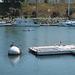 Oceanside Harbor (2482)